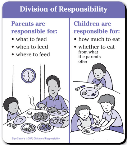 Ellyn Satter division of responsibilty