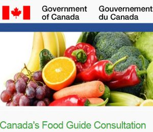 food-guide-consultation